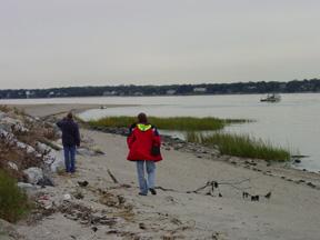 Treasure Island Beach Sound Permit